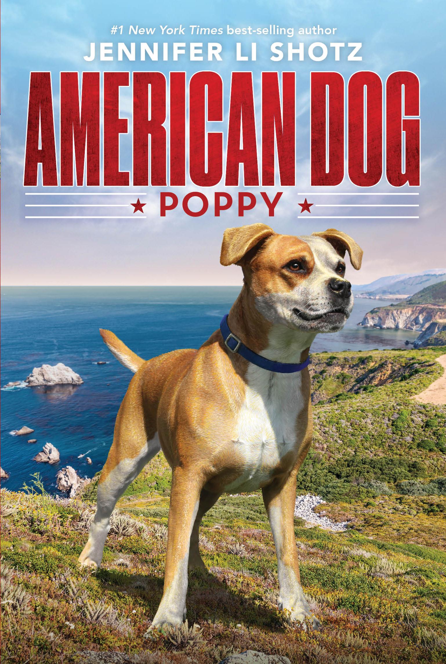 Am-Dog-Poppy