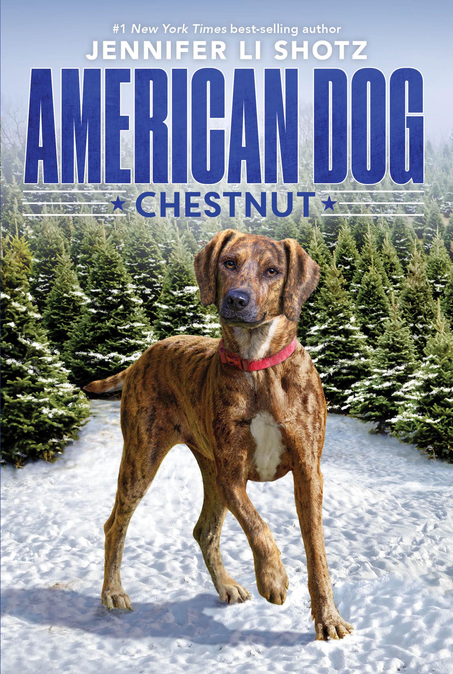 AmDog-Chestnut